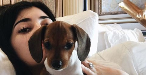 Kylie Jenner with her new birthday present puppy, Penny