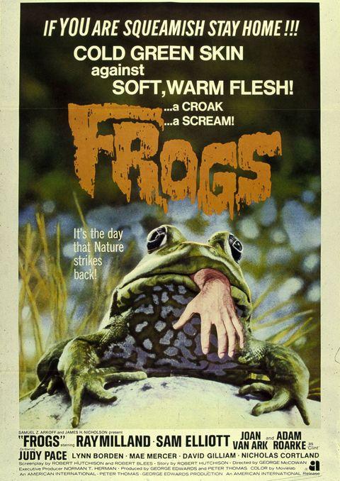 Frog, Toad, Amphibian, Poster, True frog, Adaptation, Bufo, Bullfrog, Advertising, True toad,