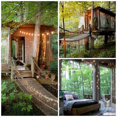 Wood, Plant, Green, Property, Real estate, Home, Garden, Linens, Backyard, Yard,