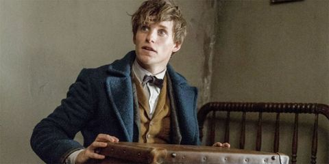 11 Harry Potter references in Fantastic Beasts