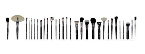 Best Makeup Brushes Morphe