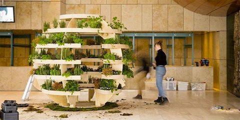 ikea the growroom - Ikea Garden