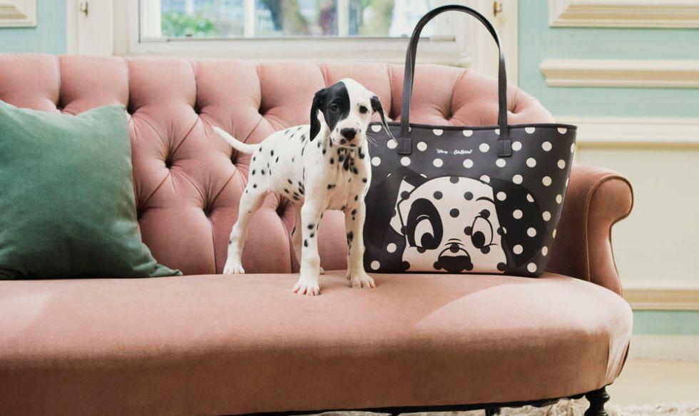 Wonderful Dalmation Chubby Adorable Dog - gallery-1487851002-cath-kidston-101-dalmatians-collection  Photograph_255259  .jpg?resize\u003d768:*