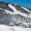 <p>Andorra isn't the first destination to spring to mind when you think of Europe's ski hotspots, but this is what makes it so alluring. You'll spend more time carving up the slopes than stuck in queues, and off-peak you can have whole runs to yourself. Nestled in the Pyrenees, Grandvalira is the highest and largest ski area in Southern Europe – and one of the most affordable - with everything from simple ski school greens to death-defying snow parks. The Sports Hotel Hermitage is located just a few steps from the pistes, which makes for even less faffing. In just one day you can ski half way across Andorra, dip your toe over the French border and be back in a Jacuzzi by sundown.<br /><em>A half-day ski pass starts at €44 + €4 insurance.</em></p>