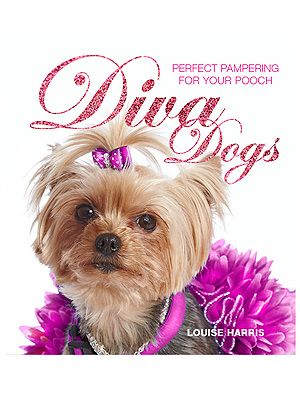 "<p>Diva dogs by Louise Harris is a fab read, even if you don't have a dog! With pictures of cute dogs in pretty outfits, not to mention a boot full of stellar advice. This is a great gift for the dog-lover in your life.</p> <p>Diva Dogs by Louise Harris, £18.99, <a title=""http://divadogs.co.uk/dogs/for-you/diva-dogs-perfect-pampering-for-your-pooch.htm"" href=""http://divadogs.co.uk/dogs/for-you/diva-dogs-perfect-pampering-for-your-pooch.htm"" target=""_blank"">Diva Dogs</a></p>"