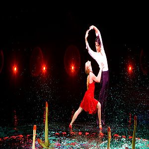 """<p>The big Las Vegas shows average around $30 to $40 million to produce, which explains the jaw-dropping, breath-taking, cling-to-the-edge-of-your-seat type stuff that gets made. Le Reve is no exception. Set in a large pool of water in the middle of an amphitheater at the Wynn Las Vegas hotel, it features diving feats that make the hairs on the back of your neck stand on end. Actors with no breathing equipment suddenly disappear under the water, a flock of (real!) birds fly across the stage and over the audience. Le Reve, which translates as 'The Dream' in French, is exactly that&#x3B; a beautiful, crazy, dream-like experience that'll have you flailing around in the pool the next day in an attempt to recreate the magic. Tickets start at $105.</p><p><a title=""""http://wynnlasvegas.com/lereve"""" href=""""http://wynnlasvegas.com/lereve"""" target=""""_blank"""">Le Reve</a></p>"""