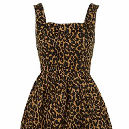 """Animal print dress, £48, <a target=""""_blank"""" href=""""http://www.topshop.com/webapp/wcs/stores/servlet/ProductDisplay?beginIndex=0&viewAllFlag=false&catalogId=19551&storeId=12556&categoryId=151405&parent_category_rn=42344&productId=1207393&langId=-1"""">Topshop</a>  - I love love love animal print and its such a huge trend for this season. This dress would look cute dressed up or down -it's sexy <em>and</em> girly! <br />"""