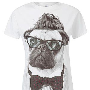 <p>A pug with a bow tie, geeky specs and a quiff a la Beckham, what's not to love?</p>