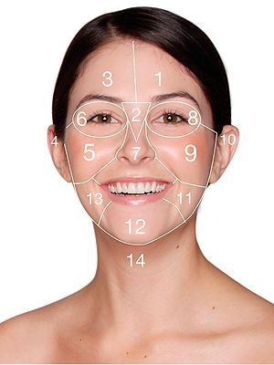 on dermalogica face mapping