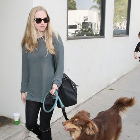 <p>It doesn't look like Amanda Seyfried has been too rocked by Ryan Philippe's upcoming paternity test - she was relaxed and smiley when spotted walking her gorgeous dog in LA this week. Whose mane is more luscious? They must use the same shampoo!</p>