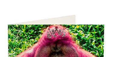"""<p>Because who can resist a gorilla in lipstick?</p> <p>Gorilla card, £2.25, <a href=""""http://www.clintoncards.co.uk/kiss-me-pink-gorilla-valentines-card"""" target=""""_blank"""">clintoncards.co.uk</a></p> <p> </p> <p><a href=""""http://www.cosmopolitan.co.uk/love-sex/relationships/valentines-day-gifts-present-ideas-men-him"""" target=""""_blank"""">VALENTINE'S DAY GIFTS FOR MEN</a></p> <p><a href=""""http://www.cosmopolitan.co.uk/love-sex/cosmo-centerfolds/cosmopolitan-sexiest-men-of-2014"""" target=""""_blank"""">SEXIEST MEN OF 2014 (SO FAR)</a></p> <p><a href=""""http://www.cosmopolitan.co.uk/love-sex/tips/best-sex-toys-for-couples"""" target=""""_blank"""">10 BEST SEX TOYS FOR COUPLES</a></p>"""
