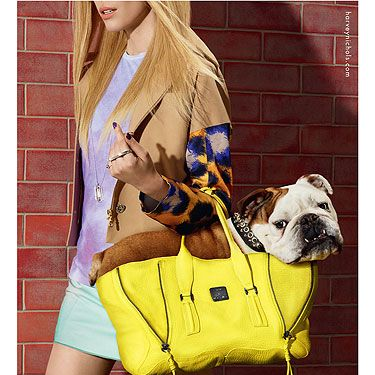 """<p>Now this is what we call a doggy bag (and a delish designer one at that)!</p><p>Say hello to Spud the British Bulldog - one of the canine stars of the new Harvey Nichols campaign for SS13, shot by fashion photographer Miles Aldridge and styled by Harry Lambert.</p><p>We don't know which we adore more: The too-cute pooch? Or the swish 3.1 Philip Lim Bag? We'll take both, please...</p><p>Share Your <a title=""""Harvey Nichols on Twitter"""" href=""""twitter.com/harveynichols"""" target=""""_blank"""">#BestInShow</a> purchases on Twitter or head over to <a title=""""Harvey Nichols"""" href=""""http://www.harveynichols.com"""" target=""""_blank"""">harveynichols.com</a> for more info on the campaign.</p>"""