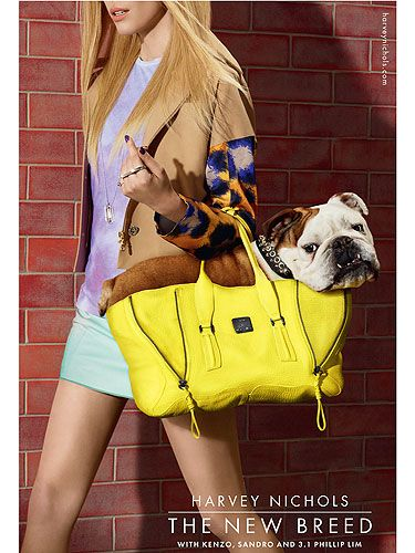 "<p>Now this is what we call a doggy bag (and a delish designer one at that)!</p> <p>Say hello to Spud the British Bulldog - one of the canine stars of the new Harvey Nichols campaign for SS13, shot by fashion photographer Miles Aldridge and styled by Harry Lambert.</p> <p>We don't know which we adore more: The too-cute pooch? Or the swish 3.1 Philip Lim Bag? We'll take both, please...</p> <p>Share Your <a title=""Harvey Nichols on Twitter"" href=""twitter.com/harveynichols"" target=""_blank"">#BestInShow</a> purchases on Twitter or head over to <a title=""Harvey Nichols"" href=""http://www.harveynichols.com"" target=""_blank"">harveynichols.com</a> for more info on the campaign.</p>"