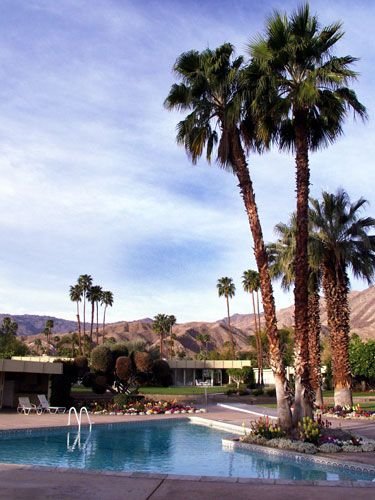 Cosmo S Best Hotels To Stay In Palm Springs California