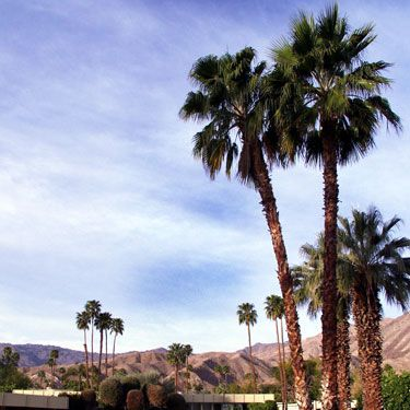 """<p>Ahh, Palm Springs – we love it. With it's utterly addictive laid-back vibe and glorious sunshine guaranteed almost all year round, there really is no better place to go to unwind, relax and enjoy some good weather, good food and beautiful scenery. <br /><br />If you're looking for somewhere special to rest your head on your trip to Palm Springs, you'll be spoilt for choice. Here, we round up our favourite hotels to kick back at in this beautiful Californian desert resort…<br /><br /><a href=""""http://www.cosmopolitan.co.uk/travel/luxury-breaks/cosmo-top-travel-destination-kat-perriam-visits-palm-springs-california"""" target=""""_blank"""">HOLIDAY DESTINATION REVIEW: PALM SPRINGS, CALIFORNIA</a></p>"""
