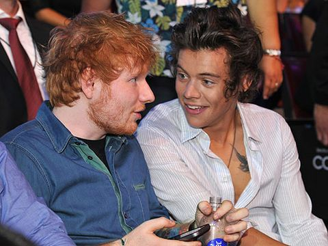 <p>Taylor Swift said what? Harry Styles catches up with his mate, Ed Sheeran at the TCAs. We wonder whether they compared notes on Harry's ex-beau, Taylor Swift or whether they just talked song-writing and tattoos.</p>