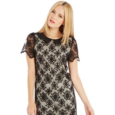 <p>This shift dress is cute and pretty whilst still being office party appropriate, thanks to its sheer daisy-embroidered overlay and mini-dress length.</p>
