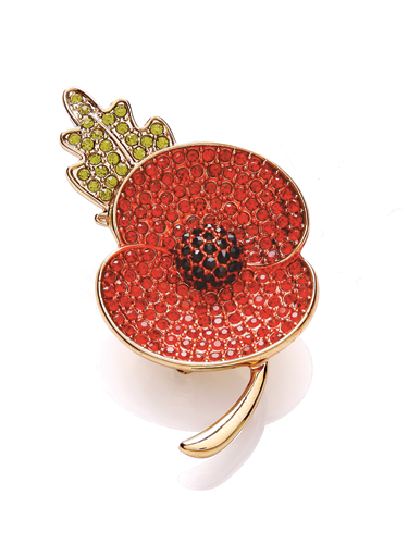 <p>We love the red crystal Buckley London poppy, as seen on HRH the Duchess of Cambridge on Remembrance Sunday last year?</p>