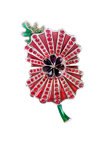 """<p>Join the ranks of Cheryl Cole and Gary Barlow who favour Kleshna's gorgeous creations.</p> <p>Enamel and crystal poppy brooch, £54.99, <a href=""""http://www.kleshna.com/category/royal-british-legion"""">kleshna.com/category/royal-british-legion</a></p> <p>(15% of each sale goes to The Royal British Legion)</p> <p><a href=""""http://www.cosmopolitan.co.uk/fashion/shopping/investment-winter-coats"""" target=""""_blank"""">10 WINTER COATS WORTH INVESTING IN</a></p> <p><a href=""""http://www.cosmopolitan.co.uk/fashion/shopping/what-to-wear-this-week-28-october-2013"""" target=""""_blank"""">WHAT TO WEAR THIS WEEK</a></p> <p><a href=""""http://www.cosmopolitan.co.uk/fashion/celebrity/"""" target=""""_blank"""">SEE THE LATEST CELEBRITY TRENDS</a></p>"""