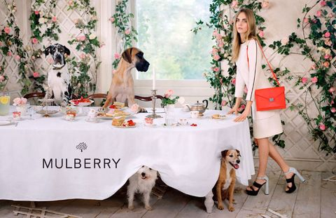 """<p><a href=""""http://www.cosmopolitan.co.uk/fashion/news/new-mulberry-handbags-lfw"""" target=""""_blank"""">SEE *ALL* THE AMAZING NEW MULBERRY BAGS</a></p> <p><a href=""""http://www.cosmopolitan.co.uk/fashion/news/cara-delevingne-mulberry-campaign-ss14?click=main_sr"""" target=""""_blank"""">BEHIND THE SCENES ON CARA'S NEW MULBERRY SHOOT</a></p> <p><a href=""""http://www.cosmopolitan.co.uk/fashion/news/cara-delevingne-mulberry-lfw"""" target=""""_blank"""">CARA OPENS FOR MULBERRY AT LONDON FASHION WEEK: RUNWAY PICS</a></p>"""