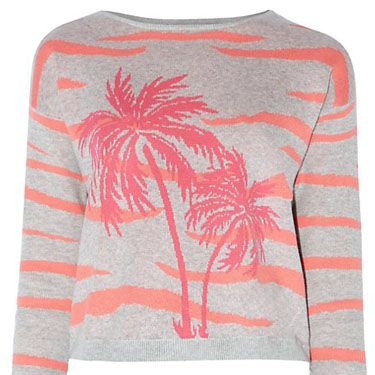 """<p>If you're dreaming of warmer weather - and can't afford a getaway - try this palm-tree print to keep you thinking of the beach.</p><p>Grey Palm Tree and Animal Print Jumper, £22.99, <a href=""""http://www.newlook.com/shop/womens/knitwear/grey-palm-tree-and-animal-print-jumper_298706704"""" target=""""_blank"""">newlook.com</a></p><p><a href=""""http://www.cosmopolitan.co.uk/fashion/shopping/new-in-store-fashion-buys-march-2014"""" target=""""_blank"""">12 OPTIONS FOR YOUR SATURDAY NIGHT STYLE</a></p><p><a href=""""http://www.cosmopolitan.co.uk/fashion/shopping/very-spring-collection"""" target=""""_blank"""">10 HERO PIECES FOR SPRING</a></p><p><a href=""""http://www.cosmopolitan.co.uk/fashion/shopping/new-in-store/what-to-wear-this-week-03-03-14"""" target=""""_blank"""">WHAT TO BUY THIS WEEK</a></p>"""