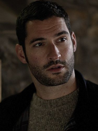 It seems as if, following the death of Matthew Crawley, Lady Mary is in  need of a new love interest - and Tom Ellis could be just ...