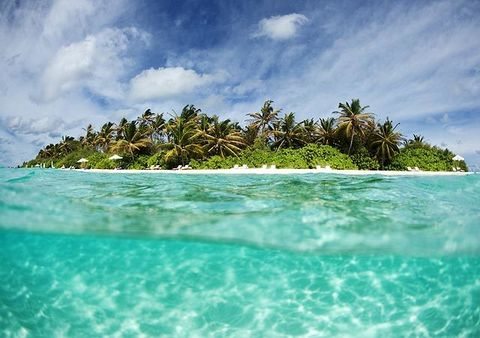 Body of water, Nature, Sky, Coastal and oceanic landforms, Aqua, Turquoise, Ocean, Arecales, Island, Teal,