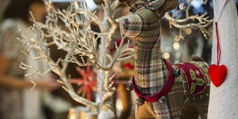 Tree, Adaptation, Plant, Branch, Christmas ornament, Fawn, Twig,