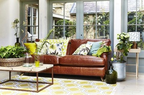 Flowerpot, Plant, Yellow, Interior design, Room, Couch, Living room, Interior design, Home, Fixture,