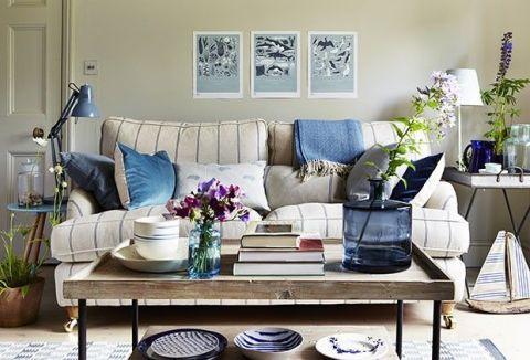 Blue, Plant, Room, Interior design, Flowerpot, Table, Furniture, Dishware, Serveware, Living room,