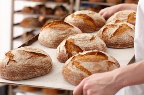 Bread, Food, Baked goods, Ingredient, Gluten, Cuisine, Snack, Bread roll, Staple food, Finger food,