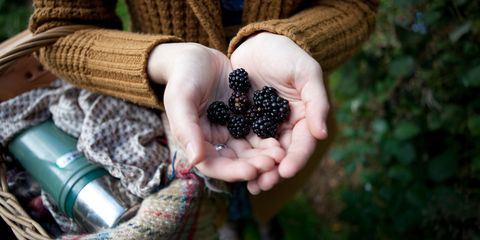 Woman holding handful of blackberries with basket of flask and blankets over her arm