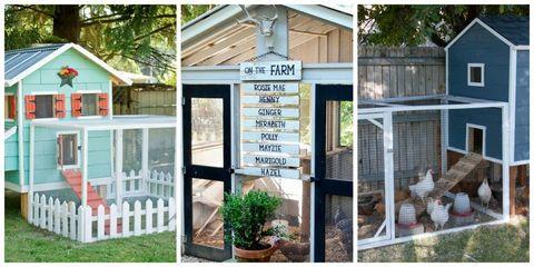 Flowerpot, Real estate, Fixture, House, Home, Houseplant, Door, Garden buildings, Cottage, Outdoor structure,