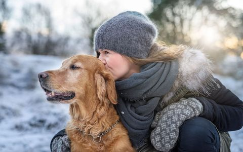 Winter, Dog breed, Dog, Carnivore, Mammal, Sporting Group, Cap, Jacket, People in nature, Street fashion,