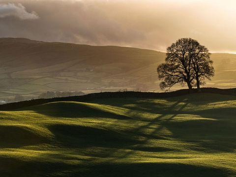 Nature, Natural landscape, Mountainous landforms, Hill, Landscape, Highland, Atmosphere, Slope, Sunlight, Atmospheric phenomenon,