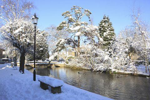 Branch, Winter, Freezing, Tree, Street light, Twig, Snow, Woody plant, Channel, Frost,