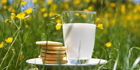 milk in field