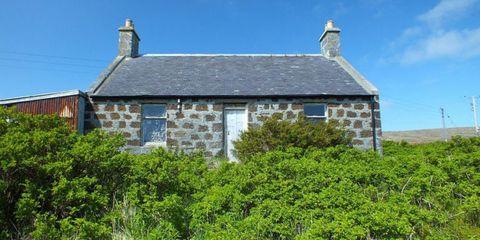 Vegetation, Window, Property, House, Roof, Building, Real estate, Home, Shrub, Fixture,