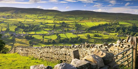 Yorkshire countryside fields