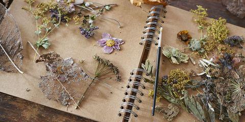 Learn the art of flower pressing