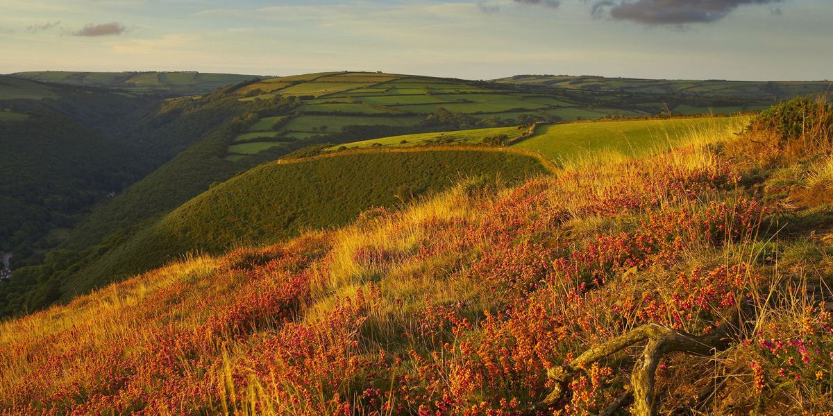 21 of the best autumn walks in the UK