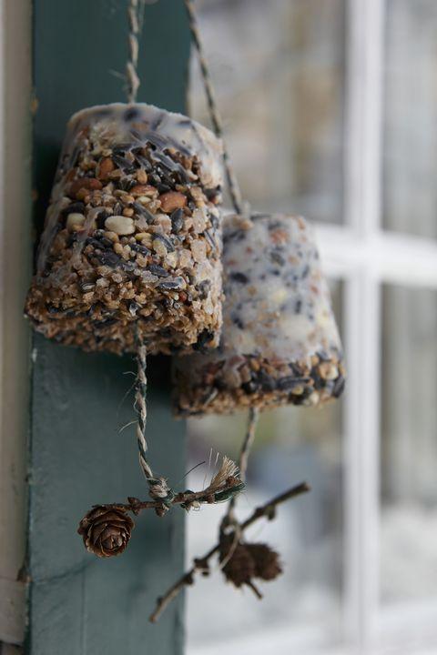 make your ownbird feeders