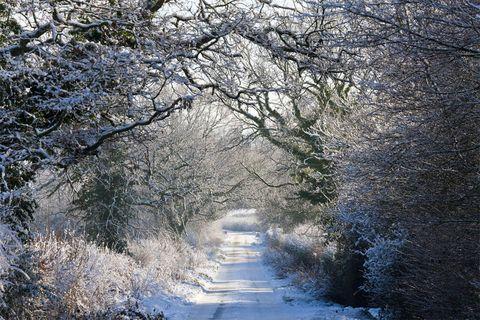Winter scene UK
