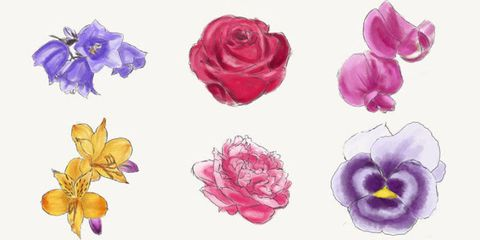 flowers graphic