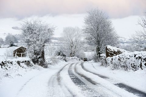 Countryside road covered in snow with trees and hedges