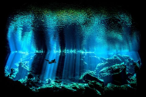 Underwater Photographer of the Year 2017: Out of the Blue