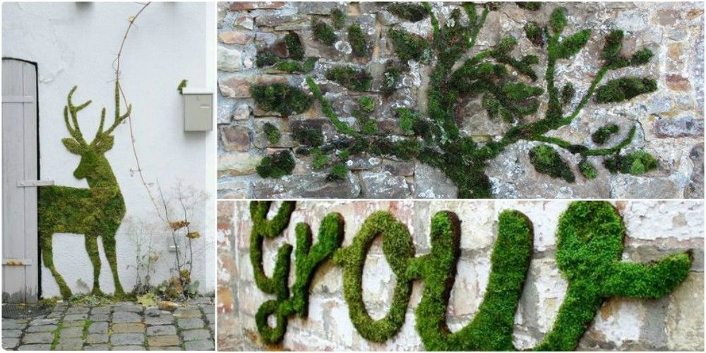 Moss graffiti is set to be a big garden trend for 2017
