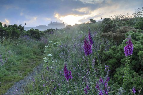 Pentire Head, Cornwall ©National Trust Images John Miller