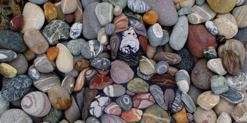Can you spot the hand-painted model in this pebbled beach photo?