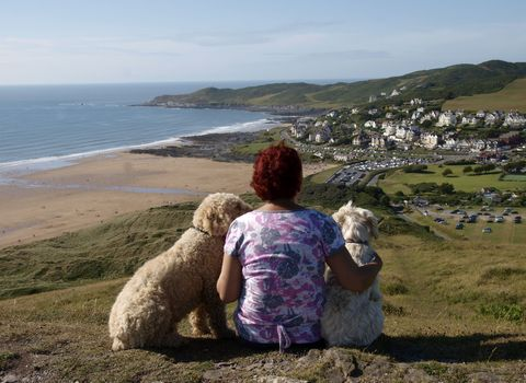 Woman with two dogs overlooking beach view